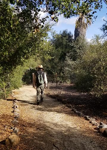 Trail_web