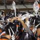 2013 Mercer Lacrosse Fall Highlights