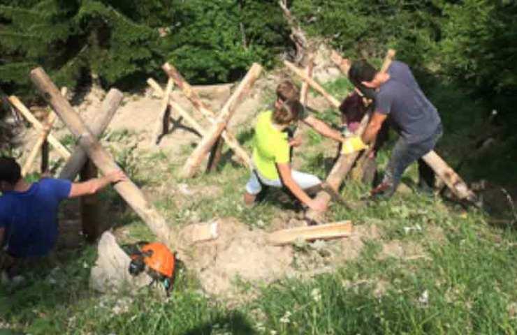 Hilf mit, die Bergwälder zu erhalten