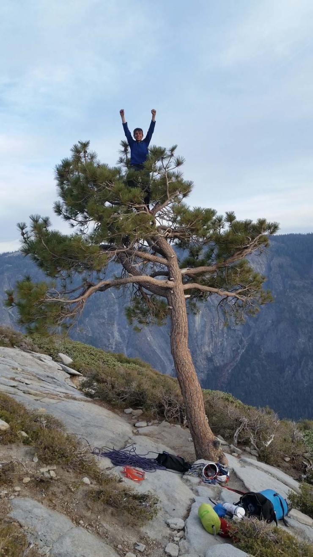 Connor Herson klettert gleich auch noch den berühmten Baum am Ende der Nose. (Bild Jim Herson)