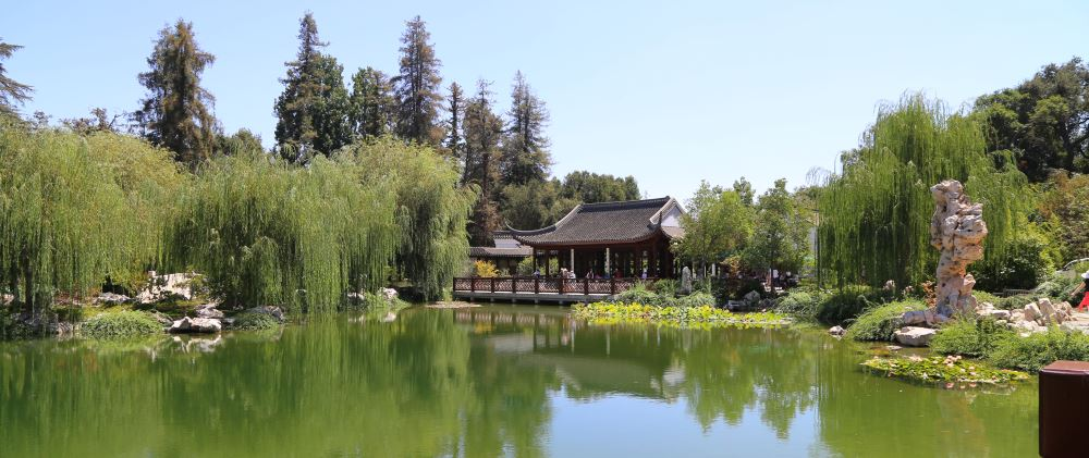 Huntington Chinese gardens