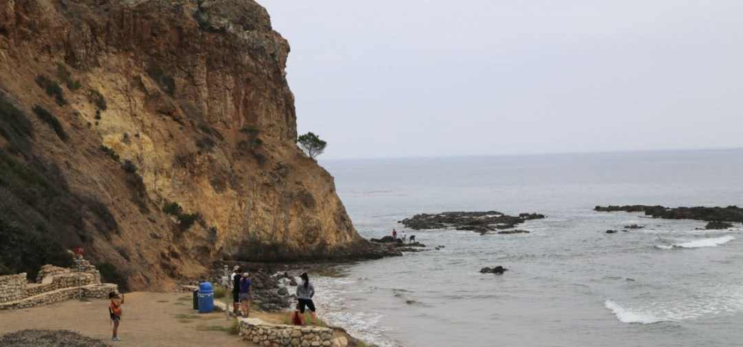 Cliff at Abalone Cove