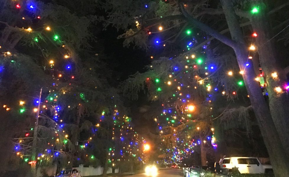 Christmas Tree Lane in Altadena