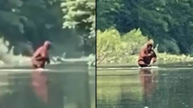 New Bigfoot Sighting Caught On Video Leaves Experts Baffled