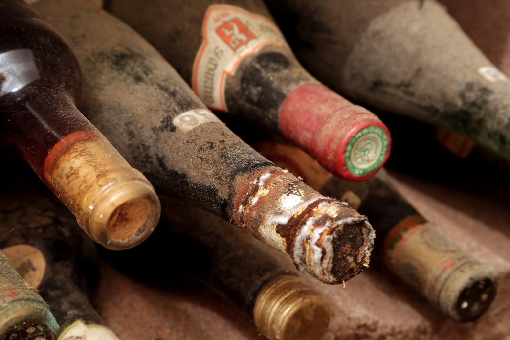 Musee du vin domaine la destinee15