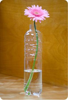 plastic-looking-glass-water-bottles-2