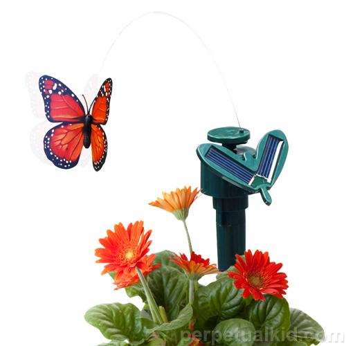 Decorate Your Garden With Solar Butterflies
