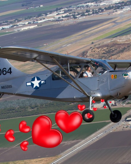 Jan Johnson's LOVE STORY   (California)