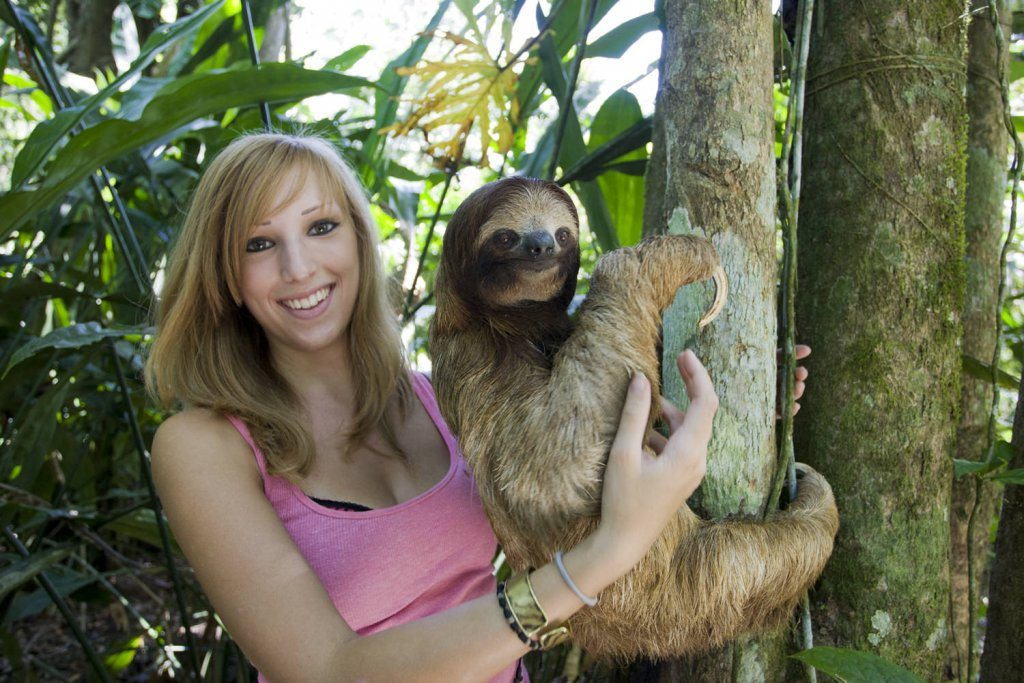 Biologist Rebecca Cliff working with Sloths in Costa Rica