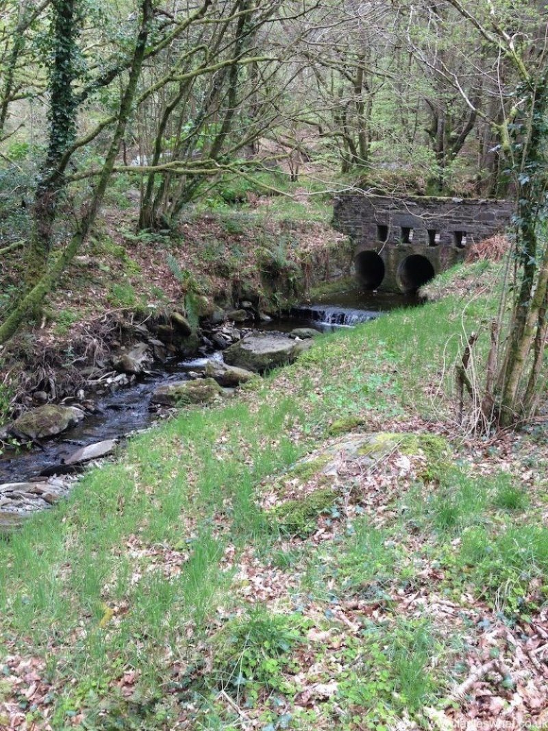 A Stream close to the Artist's Valley.