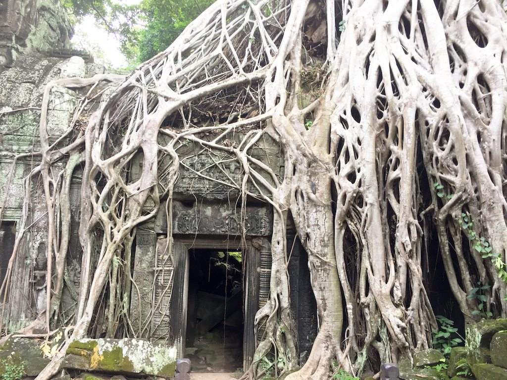 Ta Som Cambodia | Ladies What Travel