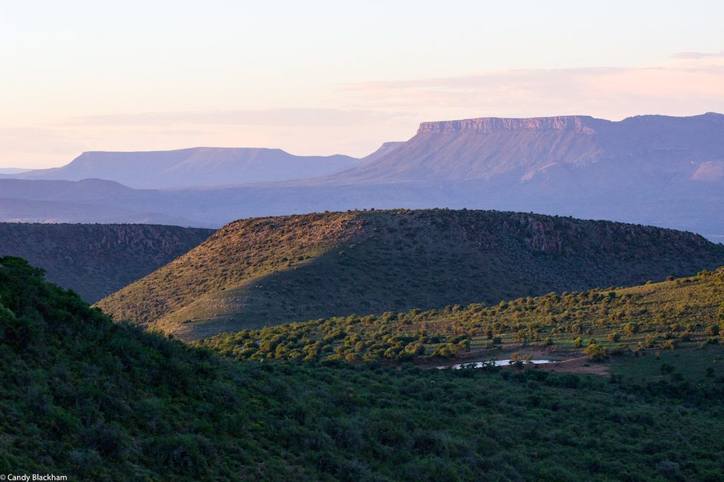 Karoo in the evening light, 2-