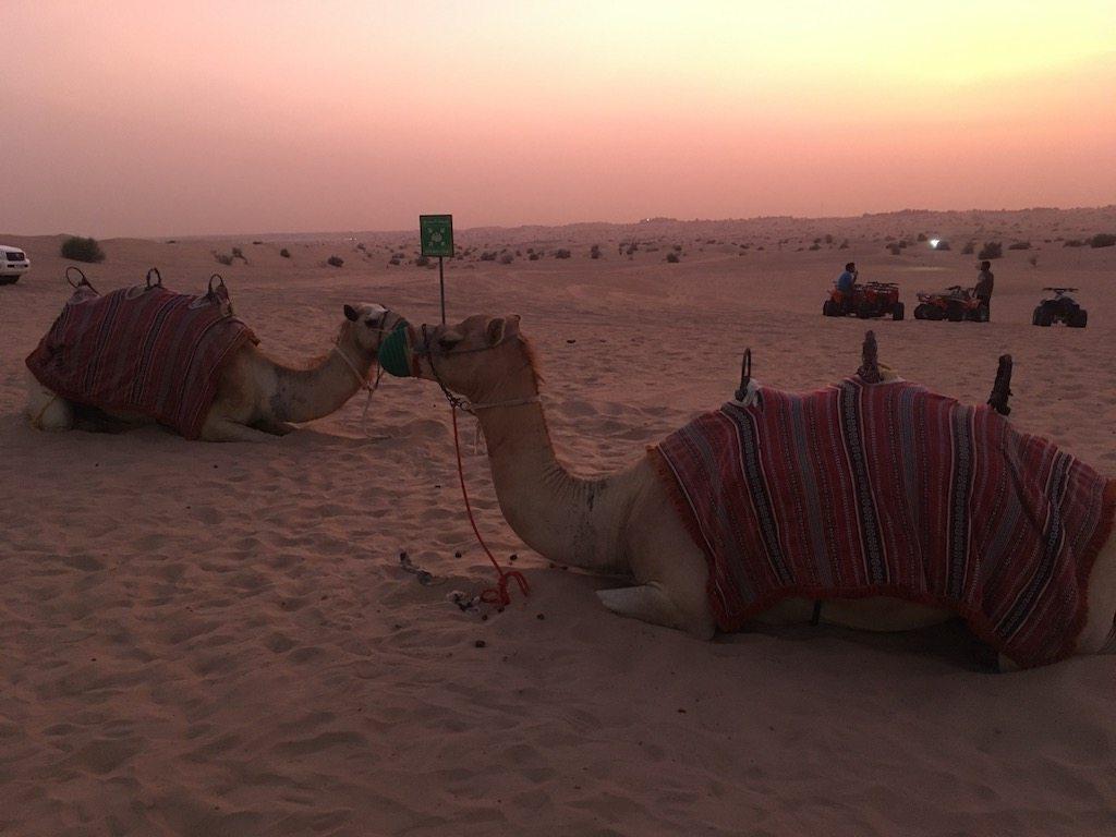 Dubai | Ladies What Travel