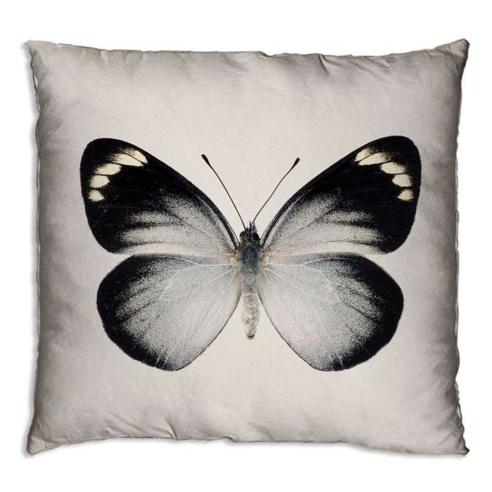 http://www.woonexpress.nl/0076420008--000/sierkussen-vlinder-wit.html