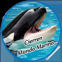 Cierren Mundo Marino : collectif partenaire de La Dolphin Connection
