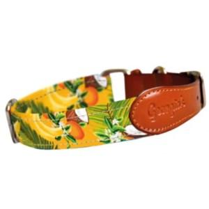 Collar para perro - Diseño exclusivo Frutas Tropicales | Ladralo.com