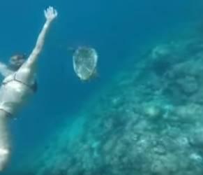 Federica Pellegrini alle Maldive: c'è anche Magnini...malgrado le voci VIDEO44