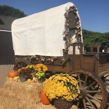 This covered wagon is adjacent to the Cosmopolitan Hotel & Restaurant. For Day of the Dead, it is decorated with fall colors including yellow marigolds and pumpkins. | Photo credit: Krista