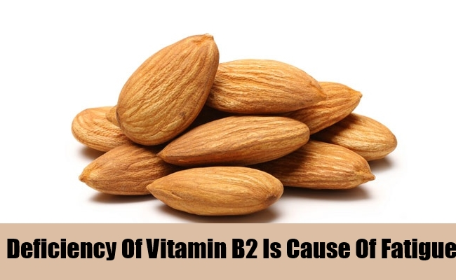 Deficiency Of Vitamin B2 Is Cause Of Fatigue