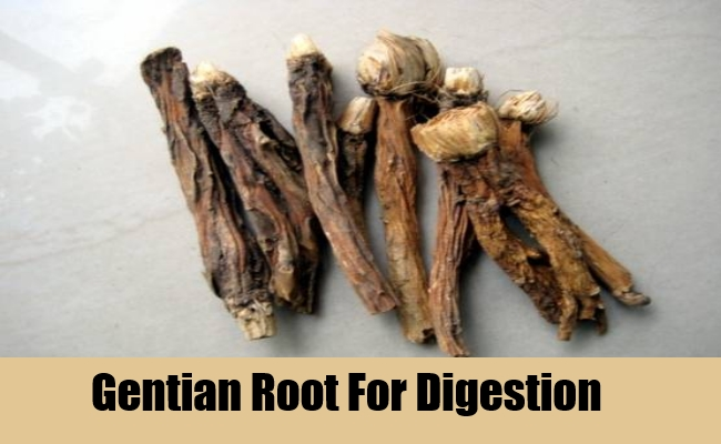 Gentian Root For Digestion