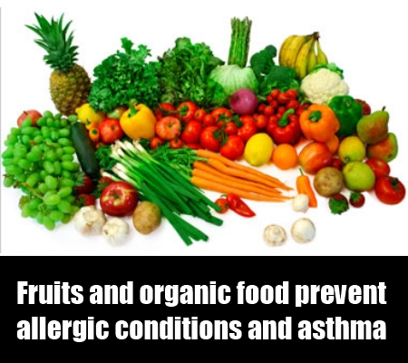 Fruits and Organic Food Products