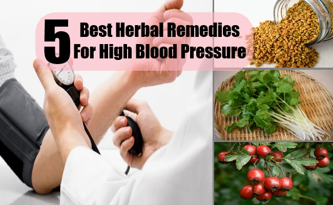 5 Best Herbal Remedies For High Blood Pressure