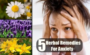 5 Herbal Remedies For Anxiety