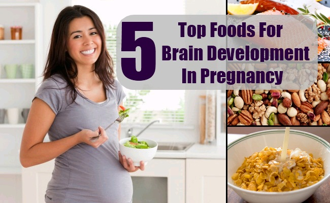 Foods For Brain Development In Pregnancy