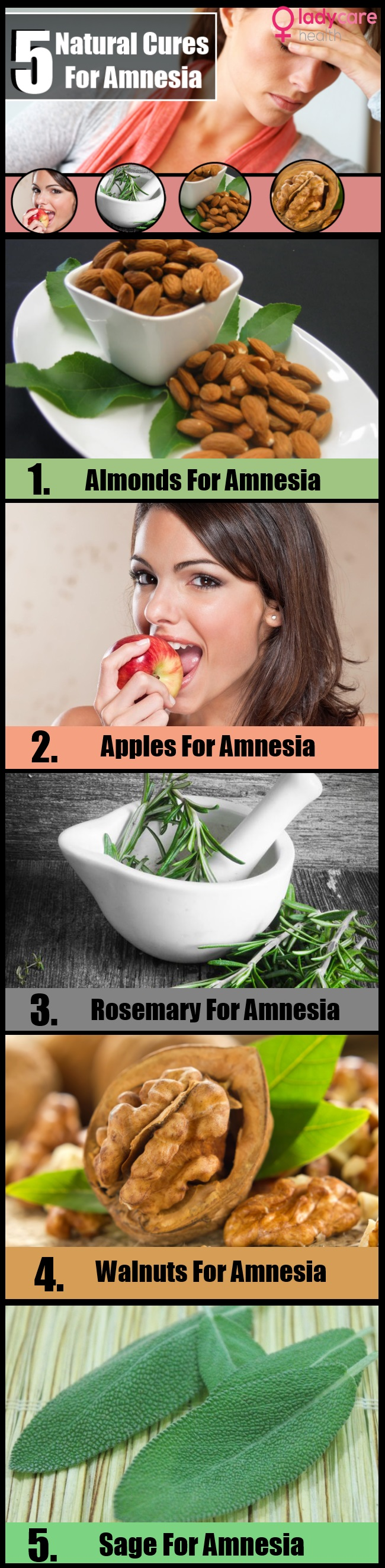 Effective Natural Cures For Amnesia