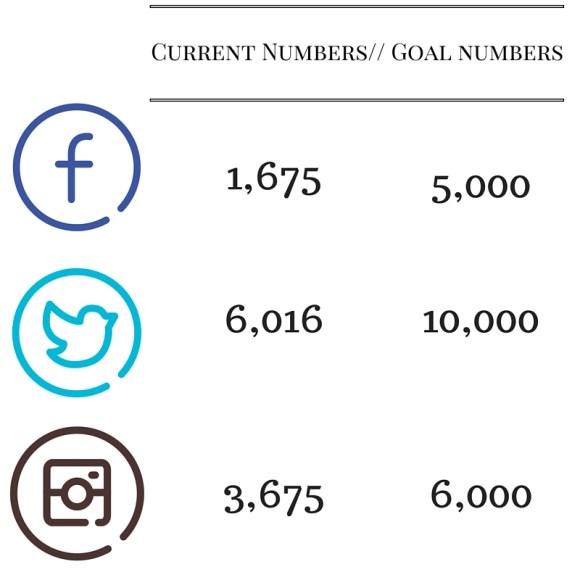2016 Social Media Goals