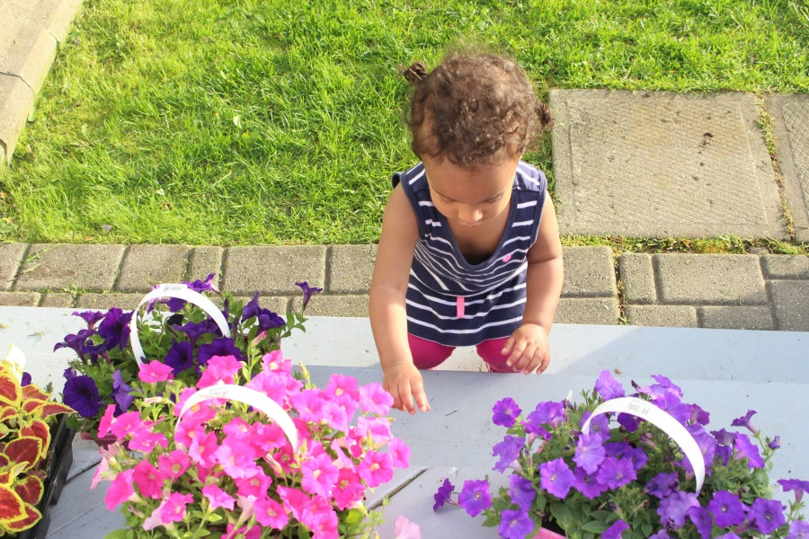 Grateful Sunday: Planting Vegetables & Flowers In Our Garden