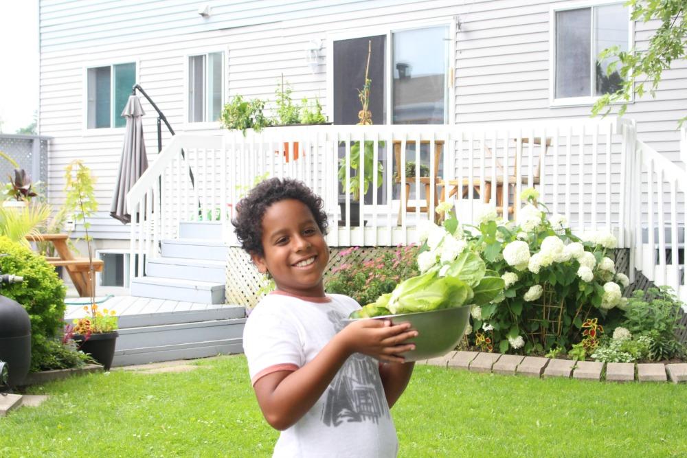 Grateful Sunday: Garden Harvest - We Got Zucchini!
