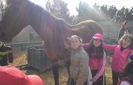 Cierre de actividades de Pascua, visitamos una granja