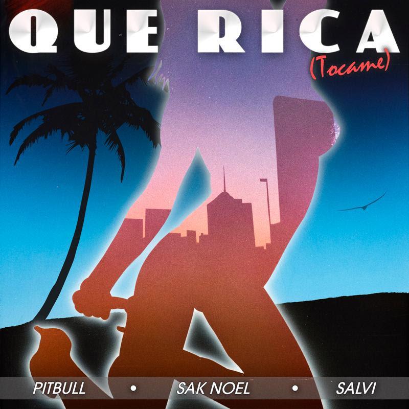 Que Rica Tocame Remix - Pitbull Sak Noel Salvi