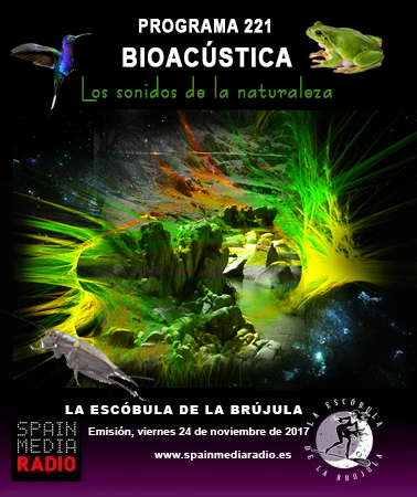 escobula-221-Bioacústica Los Sonidos de la Naturaleza