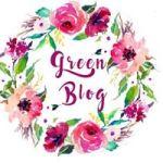 défi green blog