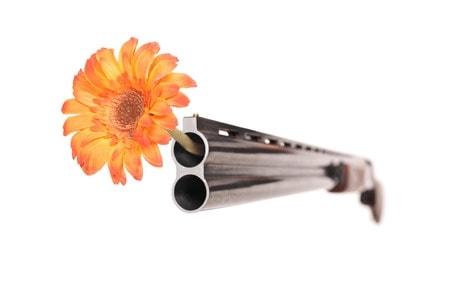 fusil fleur