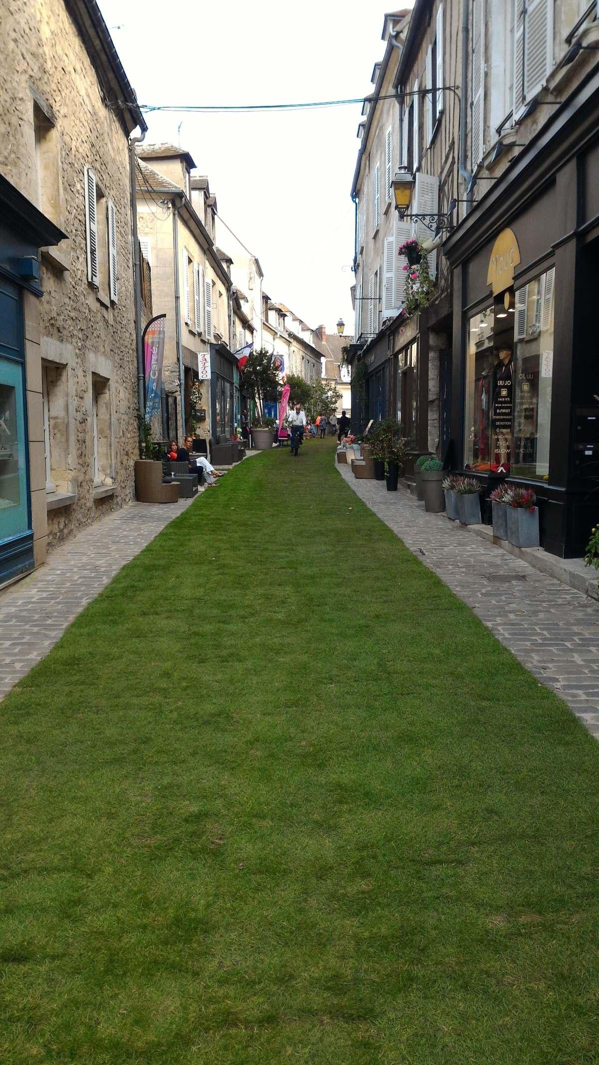 rue-verte-pelouse-senlis-st-fiacre