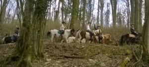 randonnée à poney