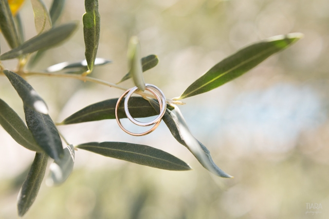 Mariage en Provence a Eygalieres - Tiara Photographie - La Fiancee du Panda blog mariage & lifestyle-0007