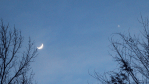 Moon and Venus setting