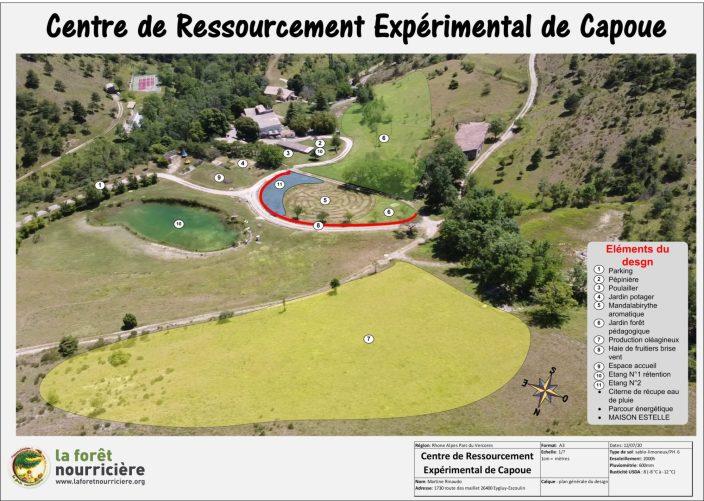 Design en permaculture, bureau d'étude la Forêt Nourricière