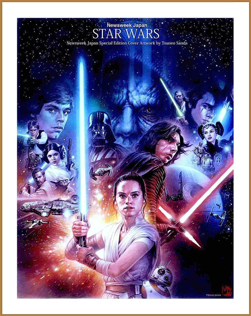 Star Wars Episodio 9 El Ascenso De Skywalker Bokusanda Póster