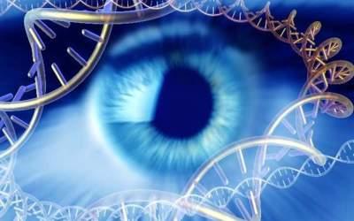 Visión y herencia genética