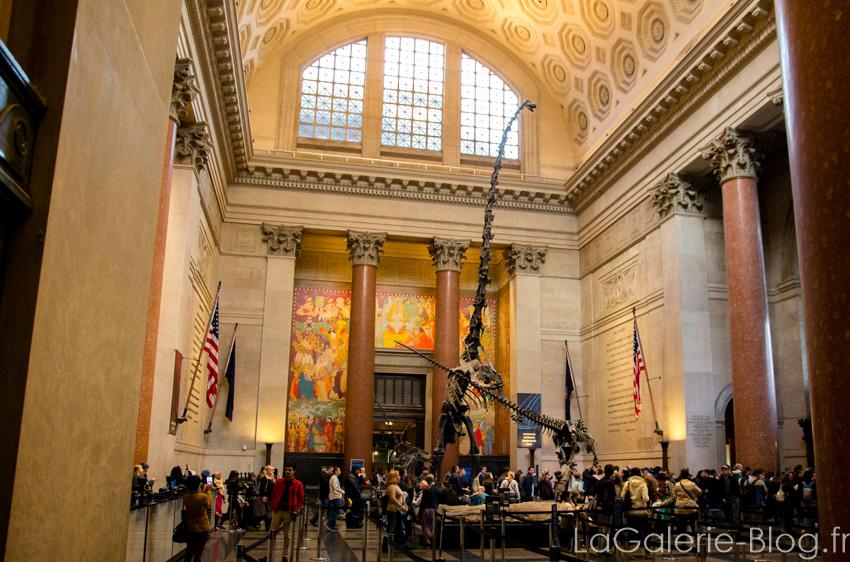 vue sur l'entrée du musée d'histoire naturelle de new york