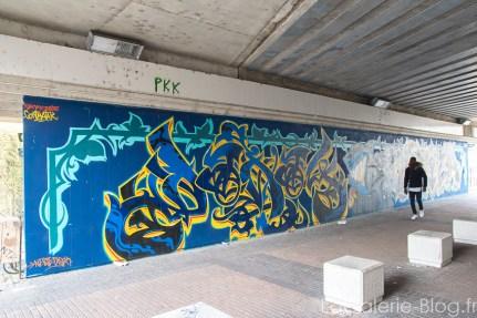 fresque grenoble