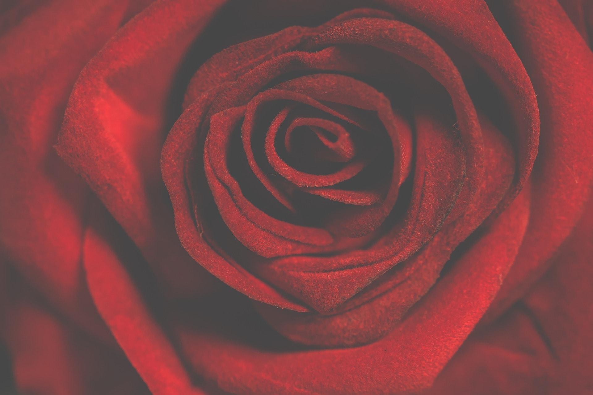 Que regalar por San Valentín