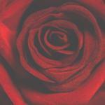 San Valentín se acerca