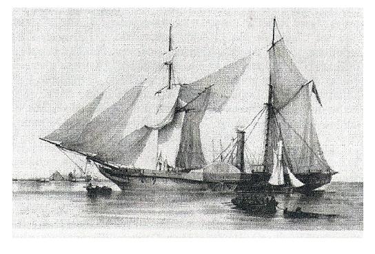 Flota invasora