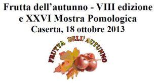 Frutta autunno 2013